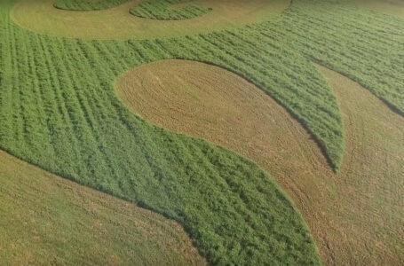 Katso video: Pohjanmaallailmestyi kuvioita heinäpeltoon
